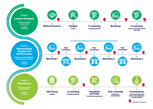 Timeline describing the 3 stages of the Director leadership development program: leader mindsets, stewardship, people and performance, and momentum